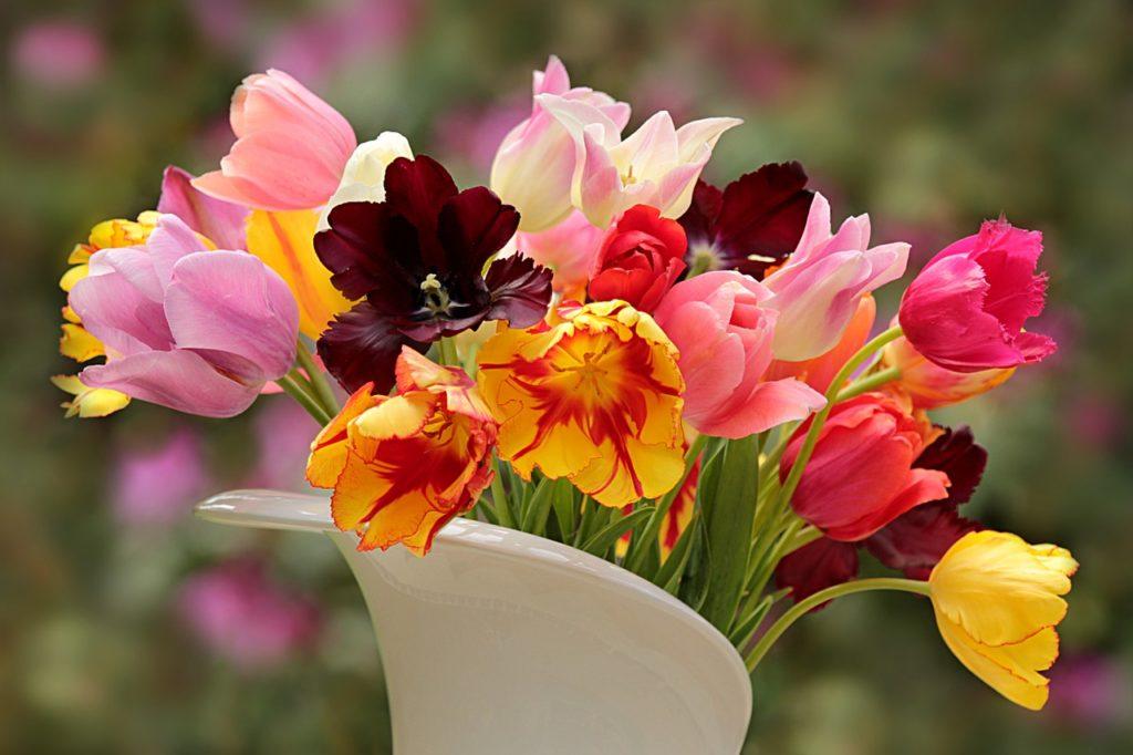 Wielange sind Schnittblumen haltbar?